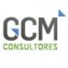GCM Consultores